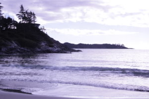 Chesterman's Beach